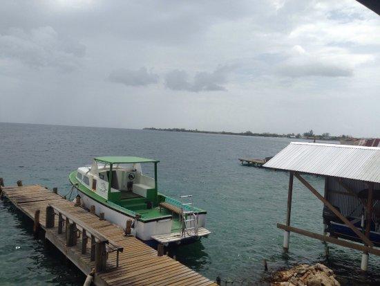Utila, Honduras: photo2.jpg