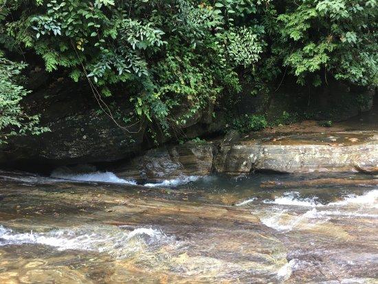 Royal River Resort: photo3.jpg
