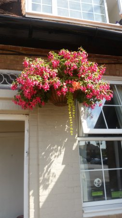 Stanwell, UK: Beautiful hanging baskets out front of pub