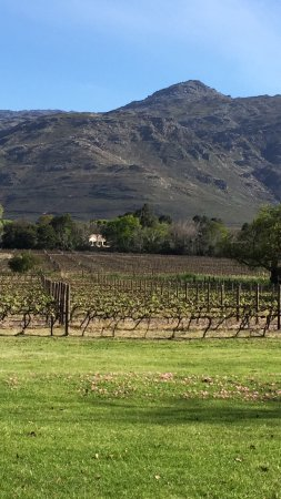 Franschhoek, Sudáfrica: Really enjoyed this wine farm during a first visit in May 2016 and returned in September. The wi
