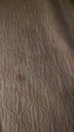 Days Inn Harrisonburg : Back of comforter