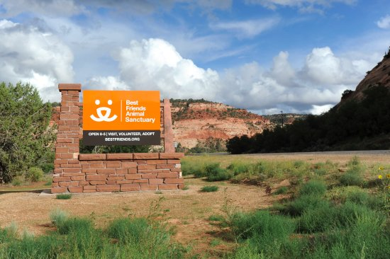 Kanab, UT: The Sanctuary is the nation's largest no-kill sanctuary for companion animals.