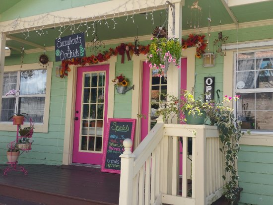 Gulfport, FL: Mildred Maloney Flowers and Events