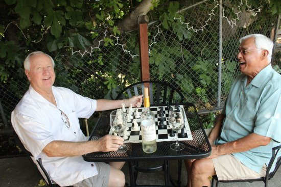 Murphys, Califórnia: Chess and Wine go great together!
