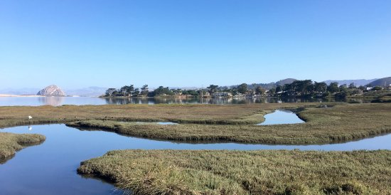 Baywood Park, CA: View from Sweet Springs towards the Inn and Morro Rock