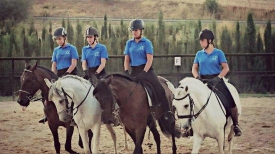 Cuevas del Becerro, Spagna: En nuestro centro no solo proponemos rutas a caballo. También de dan clases de equitación.