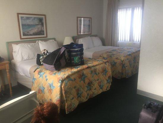 Фотография Coral Sands Motel