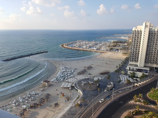 Sheraton Tel Aviv Hotel: view
