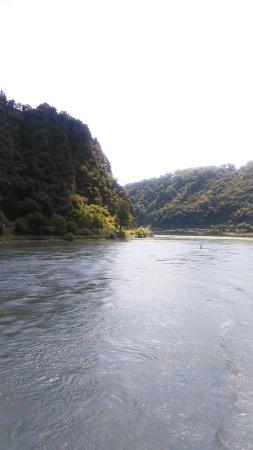 Bingen am Rhein, Germania: IMG_20160807_124048_large.jpg