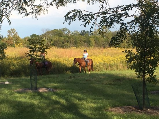 Harrison, OH: Sharing the trails (near) the bike/hike trail with horseback riders