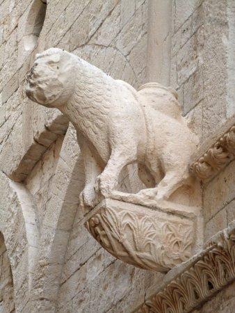Duomo di Molfetta - Parrocchia San Corrado: Duomo di Molfetta