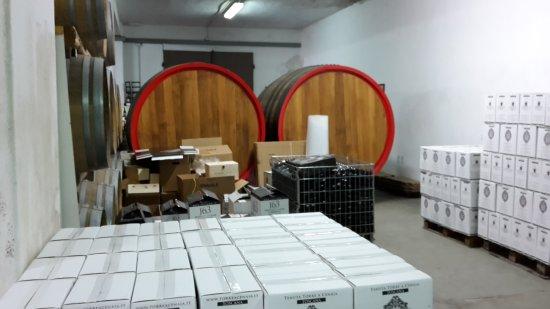 Crespina, Italia: Weinkeller / Verkaufsraum
