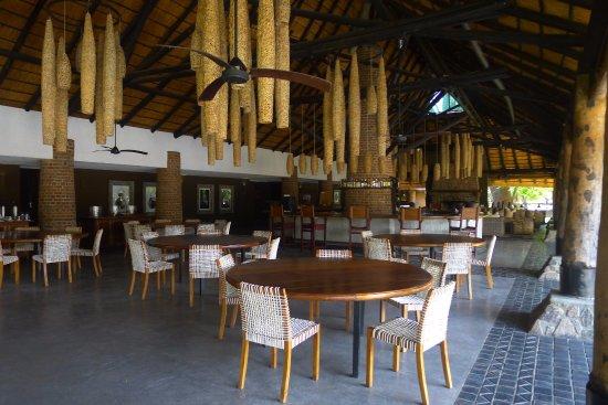 Foto de South Luangwa National Park