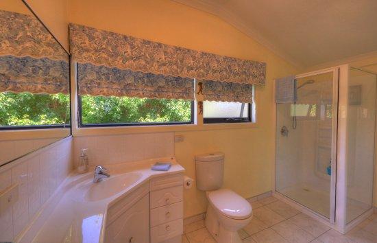 Devonport, Australien: Riverview 1 QS bathroom with shower & toilet