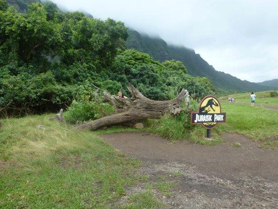 Kaneohe ภาพถ่าย