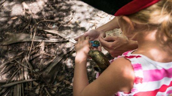 Bouillante, Guadalupe: Découverte de la boussole !