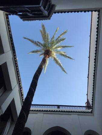 Zamzam Riad Foto