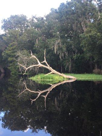 ДеЛанд, Флорида: photo3.jpg