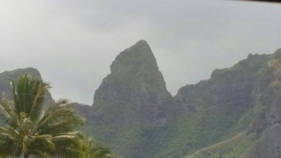 Hawaii Movie Tours 사진