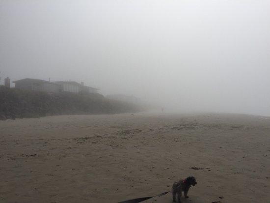 Rockaway Beach, OR: photo3.jpg