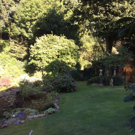 Woodgreen, UK: Small view of part of the garden from the bedroom window