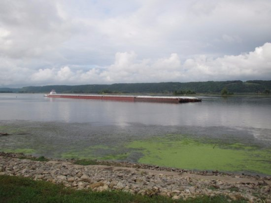 Guttenberg, IA: barges approaching the lock and dam