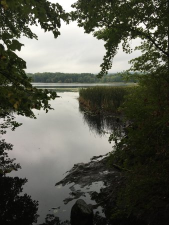 Lakeville, CT: Larsen hiking trail