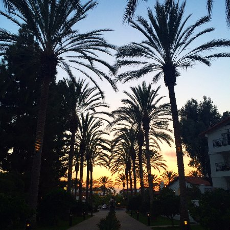 Omni La Costa Resort and Spa: Beautiful sunsets on the property