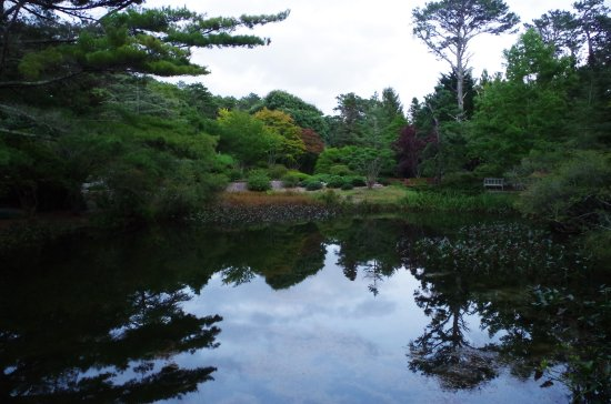 West Tisbury, MA : Mytoi gardens at dusk