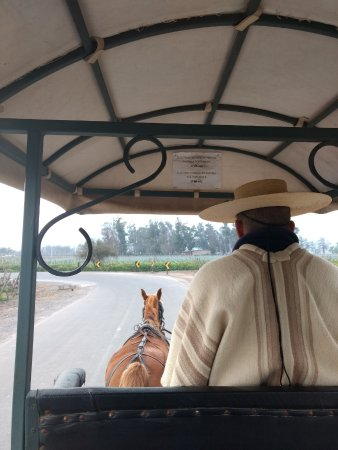 Alto Jahuel, ชิลี: Passeio de charrete
