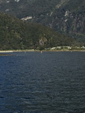 Milford Sound: photo8.jpg