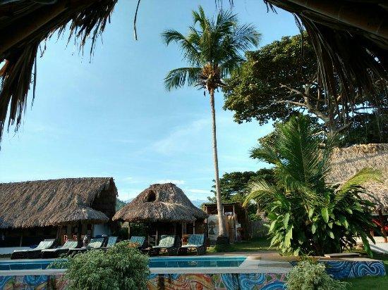 The Tiki Hut Hostel Palomino