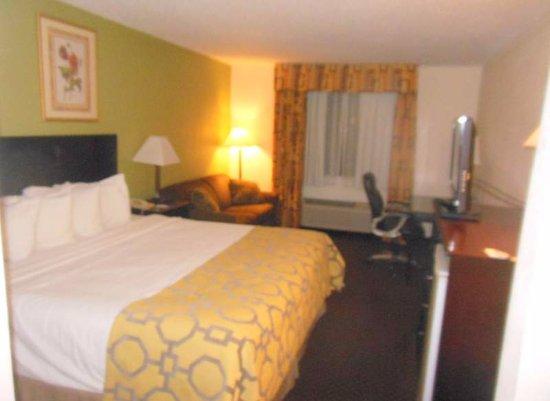 Baymont Inn & Suites Battle Creek Downtown: Bed