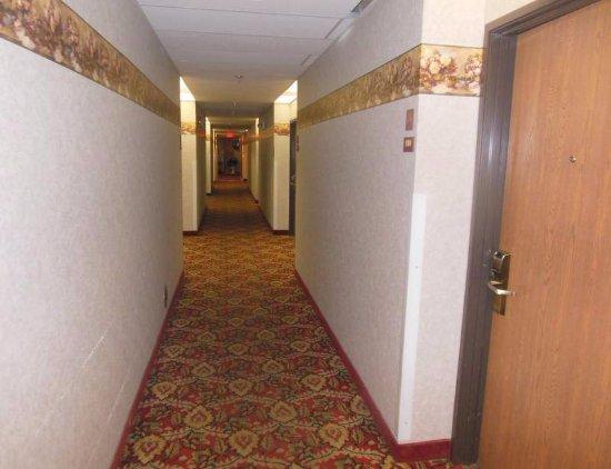 Baymont Inn & Suites Battle Creek Downtown: Hallway