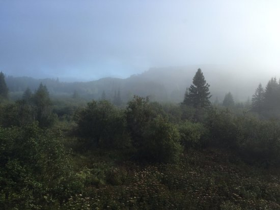 Agawa Canyon Tour Train: view