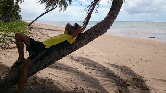 Patacho Beach: DSC_0314_1_large.jpg