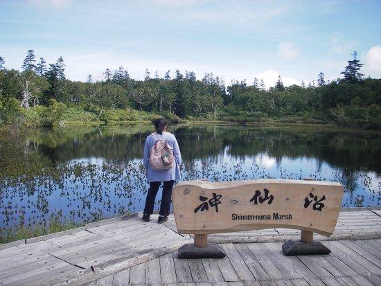 Kyowa-cho, Japón: 神仙沼の様子