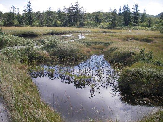 Kyowa-cho, Japonya: 沼が点在します