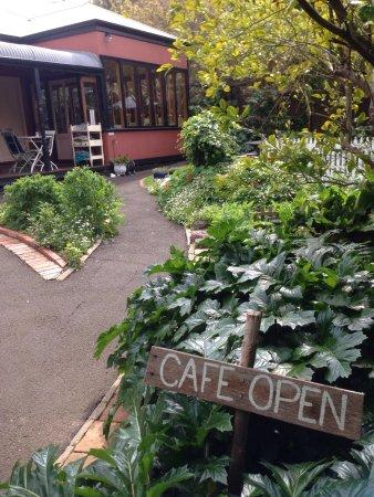 Queenscliff, Australien: photo0.jpg