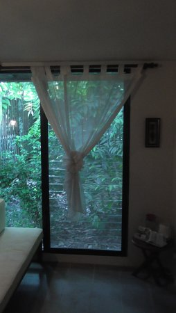 Sukau Rainforest Lodge: room with view of the forest