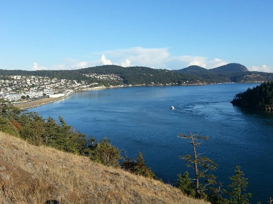 Anacortes, WA: 20160920_172612_large.jpg