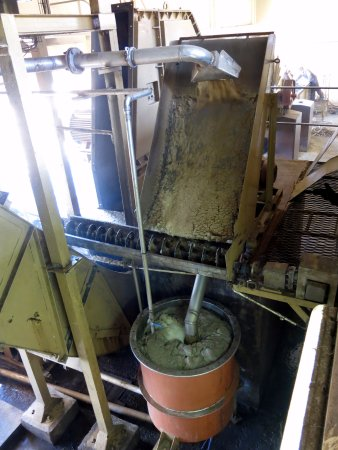 Chamarel: The extracted sugar cane juice