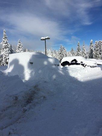 Fish Camp, Kaliforniya: Our truck buried in snow
