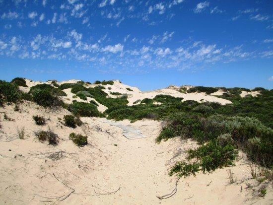 Goolwa, Australia: Spectacular white sand dunes