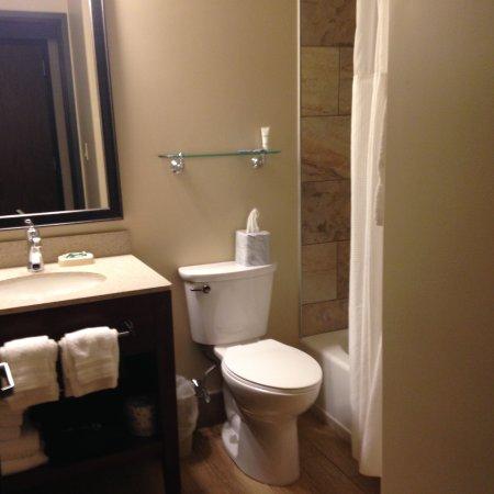 Holiday Inn Bangor-Odlin Road: upgraded flooring and tile in bathroom