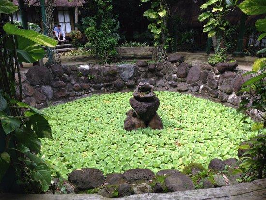 Central Luzon Region, ฟิลิปปินส์: spa pond