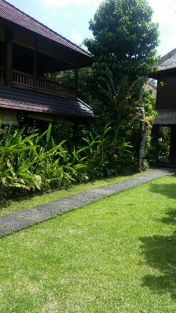 Ananda Cottages: 20160908_140622_large.jpg