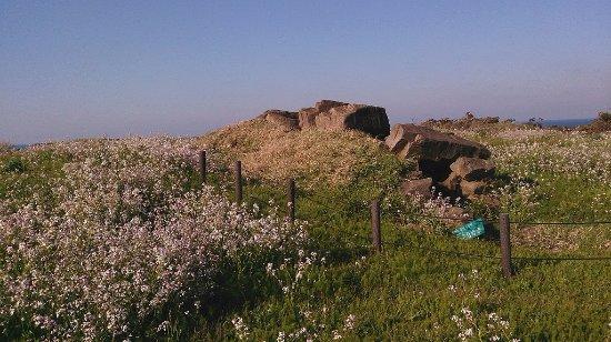 """Kyotango, Jepang: """"oonaru """"groups of ancient tombs"""