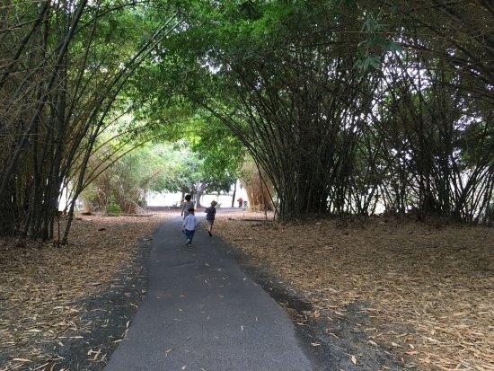 Jardín Botánico y Zoológico de Rockhampton: photo2.jpg
