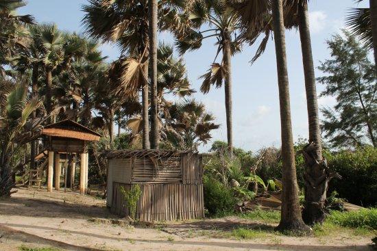 Boboi Beach Lodge: al fondo la cabaña y zona común